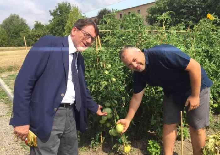 I pomodori inclusivi