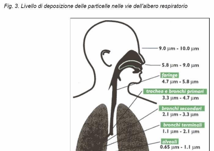 Dossier inceneritore, il 'modesto' eccesso di linfomi a Modena