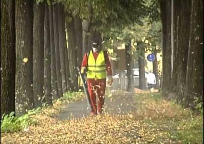 Soffiatori a motore e foglie cadenti: si moltiplica l'inquinamento