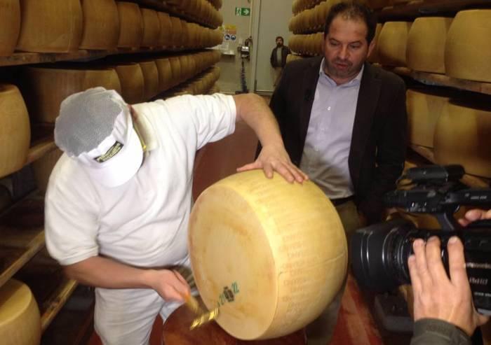E' fatto a Lesignana il formaggio più buono del mondo