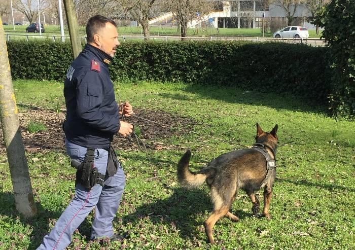 Modena, in centro la polizia trova droga nascosta ovunque