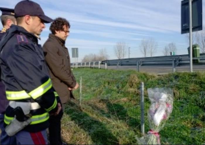 Morto per un cinghiale in autostrada: la politica si indigna