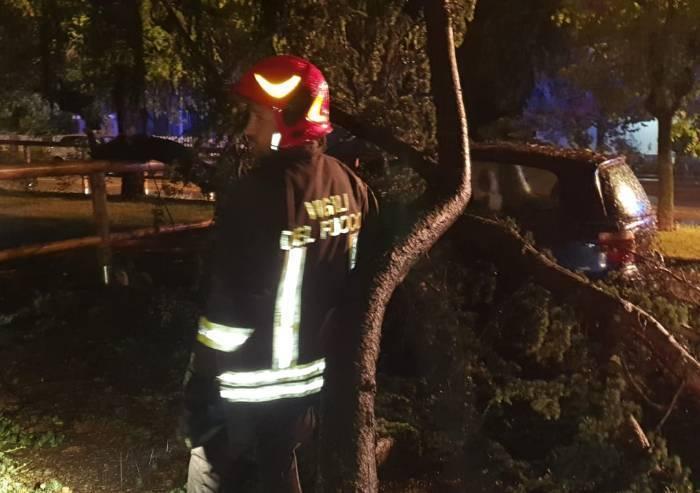 Maranello: alberi caduti nella notte sulle auto