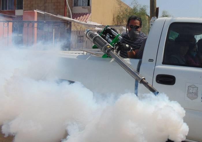 Tre casi di Dengue a Modena e provincia: uno in città, due a Mirandola