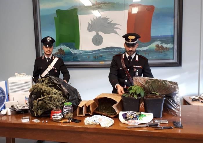 Spaccio marijuana, scoperta rete provinciale: un arresto e 12 denunce