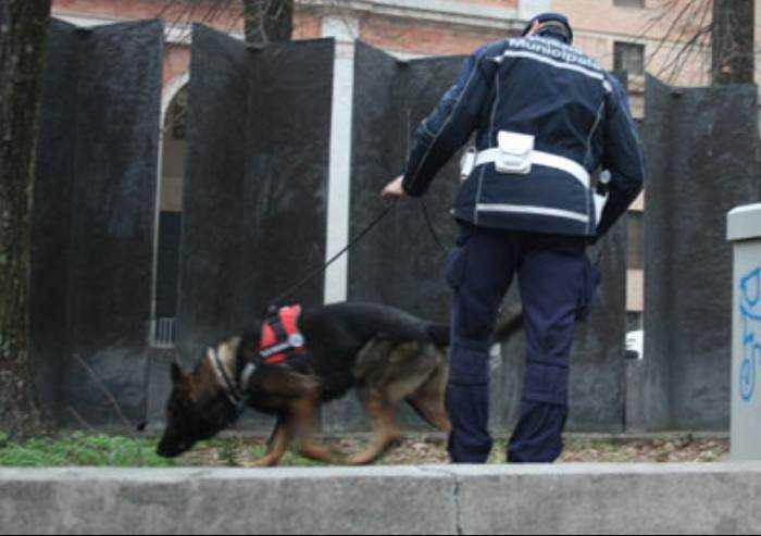 Polizia municipale, Modena ha acquistato un cane antidroga