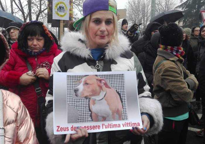 Cane massacrato e ucciso, in 500 a Modena in corteo