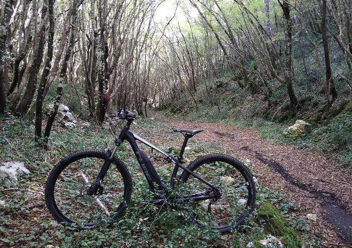 Covid, in bici nel bosco del suo Comune: multato ciclista di Zocca