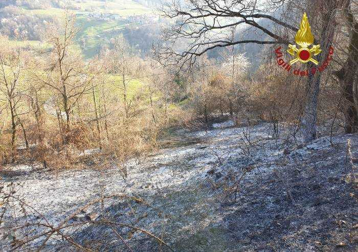 Bosco in fiamme a Lama Mocogno: 2,5 ettari inceneriti