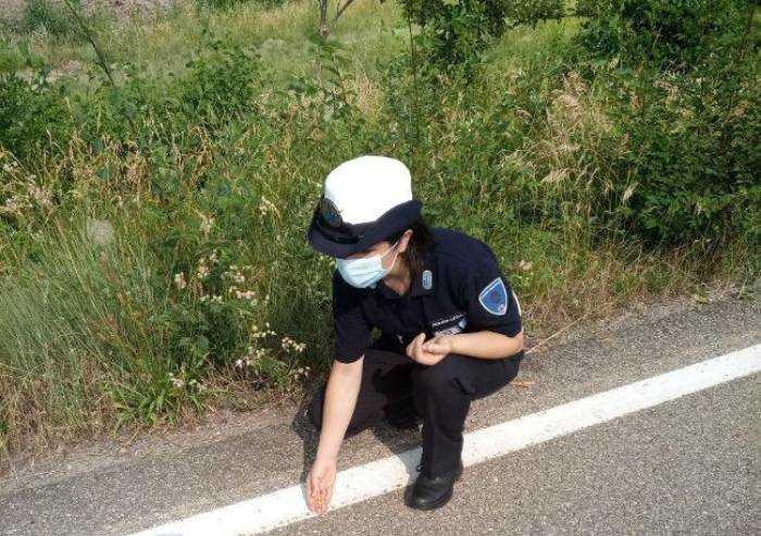 Maranello, puntine gettate in strada contro i ciclisti