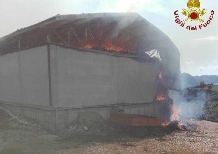 Pavullo: centinaia di rotoballe di fieno distrutte dal fuoco