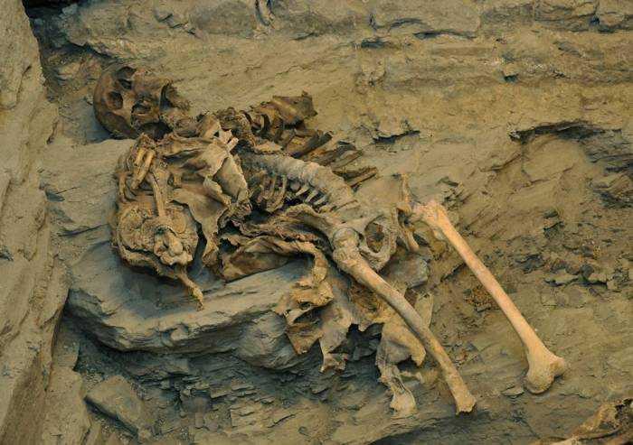 Mummie di Roccapelago, il parroco benedice i resti umani