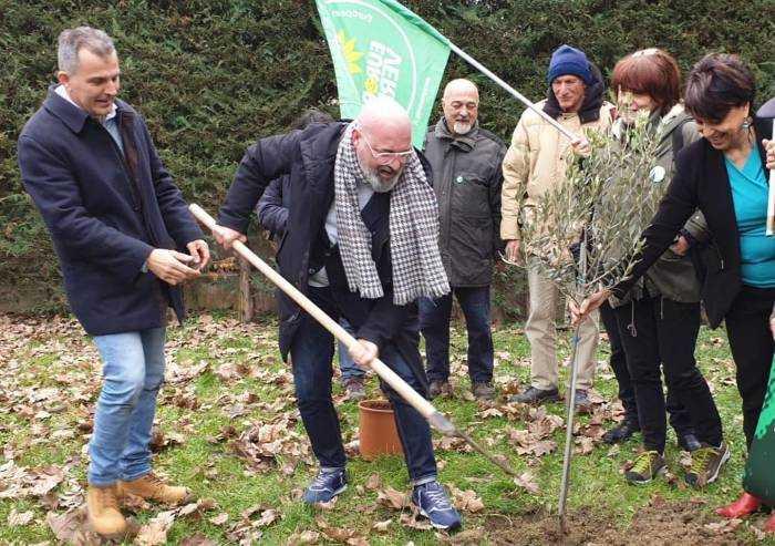 Bonaccini promise 4,5 milioni di nuovi alberi. Ma il bando è un flop