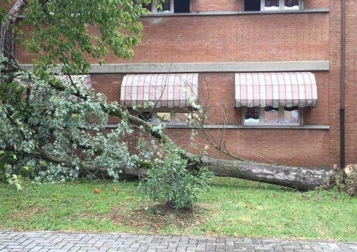 Due temporali, 180.000 euro di danni e tanti disagi a Modena