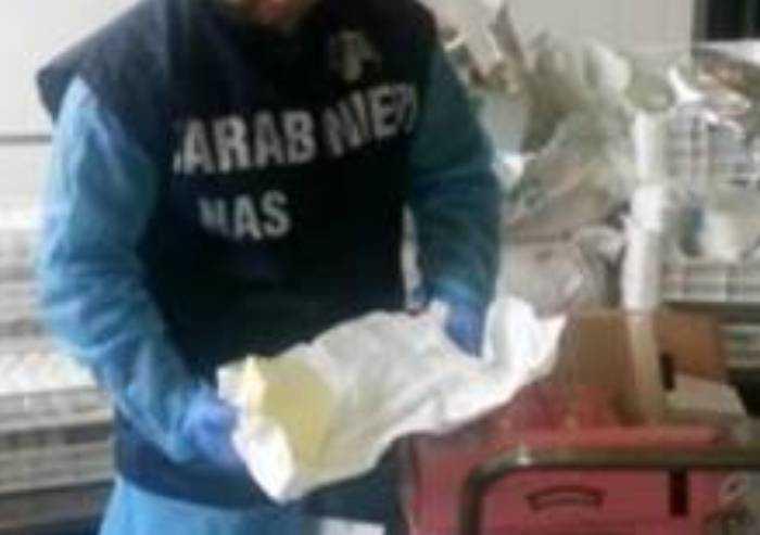Prodotti scaduti e congelati: multa e sequestro in gelateria a Modena