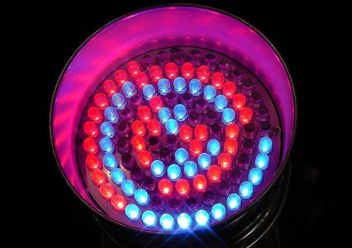 Come e perché utilizzare le lampade a Led