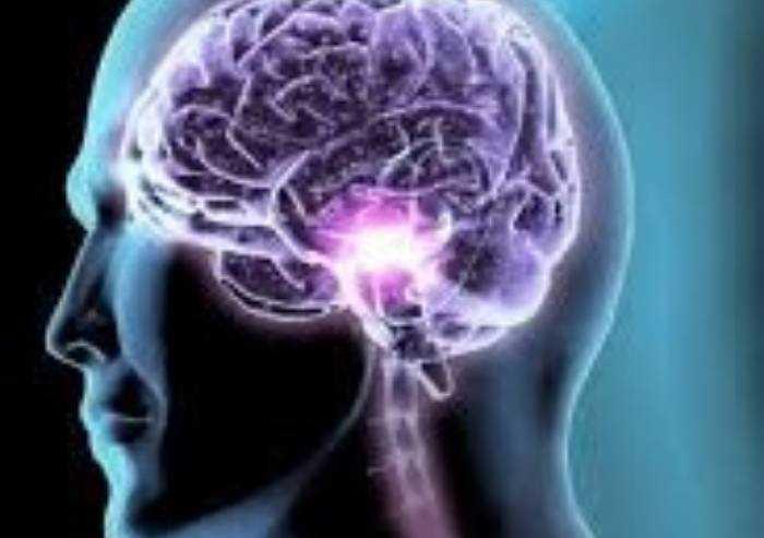 Epilessia lobo temporale: da studio Unimore novità nella ricerca
