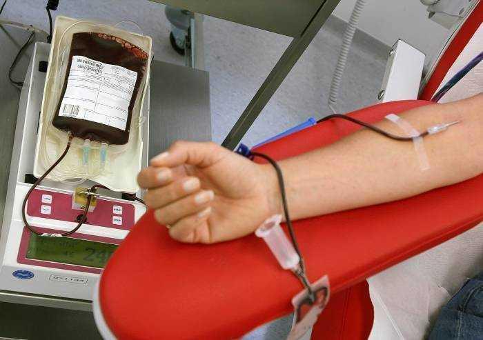 Donazioni sangue in aumento a Modena, Avis: 'l'allarme non esiste'