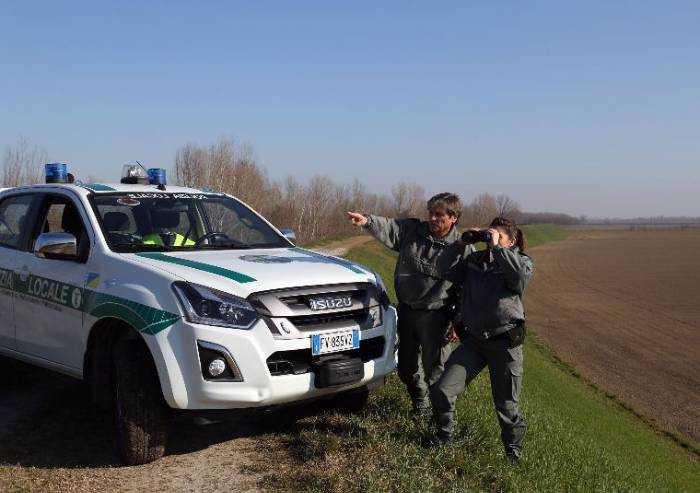 Cacciatore fugge in un campo di mais, inseguito e multato