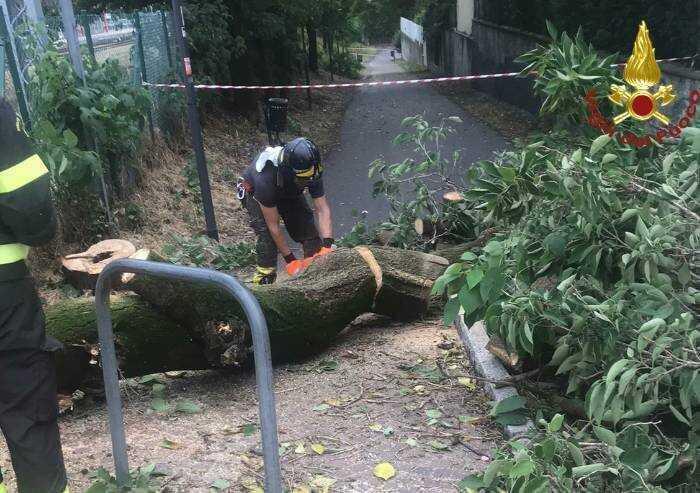 Nubifragio a Sassuolo: garage allagati e alberi abbattuti
