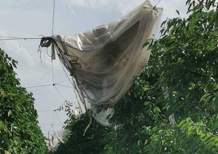Reti anti-grandine distrutte da vento e grandine: gravi danni alla frutta