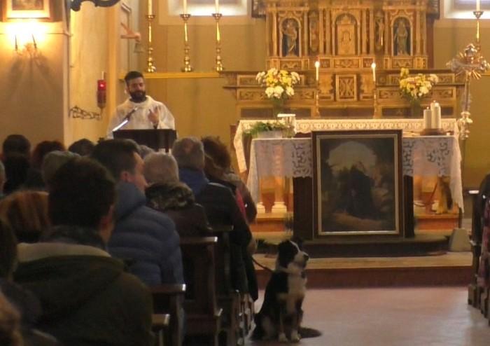S.Antonio, domenica la benedizione degli animali a Gaiato di Pavullo