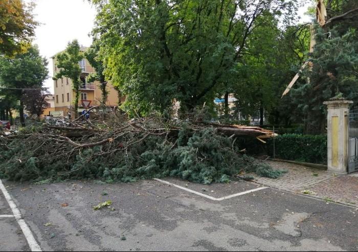 Violento temporale: continua conta danni a Soliera, Carpi e Bomporto