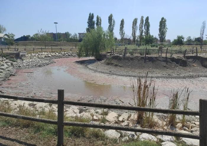 'San Felice, interramento laghetto delle Piscine: ennesimo fallimento'